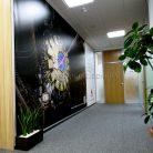 Баннер интерьерный в офис c УФ печатью-2